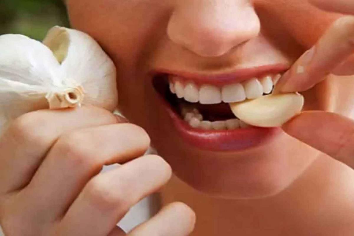 Para tener buena salud, hay que ponerse un diente de ajo en la boca -  Nuestra Córdoba